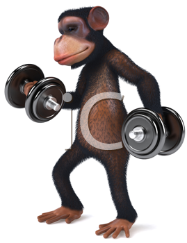 Royalty Free Clipart Image of a Monkey With Weights
