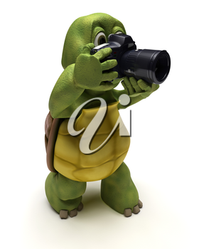 3D render of a Tortoise with slr camera