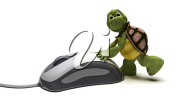 3D render of a Tortoise with a computer mouse