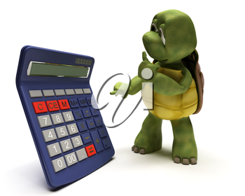 3D render of a tortoise with a calculator