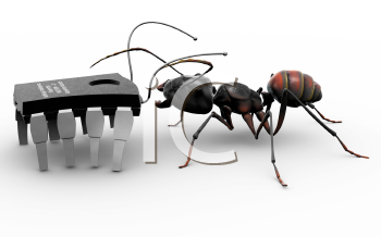 Royalty Free Clipart Image of an ant meeting a microchip computer bug.