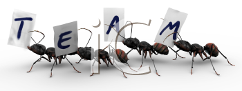 Royalty Free Clipart Image of Four ants carrying fragments of paper, each with a letter that spells the word team.