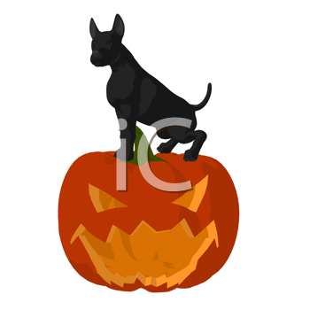 Royalty Free Clipart Image of a Black Dog on a Carved Pumpkin