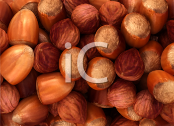 Royalty Free Clipart Image of a Hazelnut Background