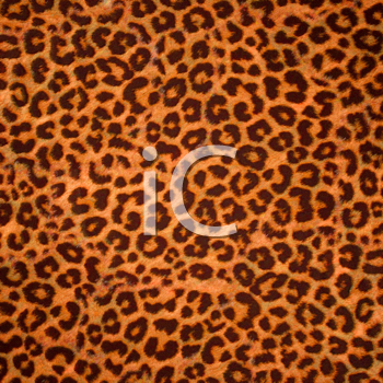 Royalty Free Clipart Image of a Leopard Print Background