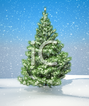 Royalty Free Clipart Image of a Fir-tree in Snow