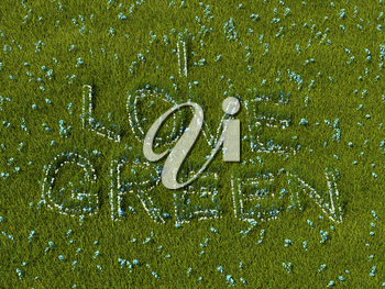 I love green flower words on the meadow. High resolution