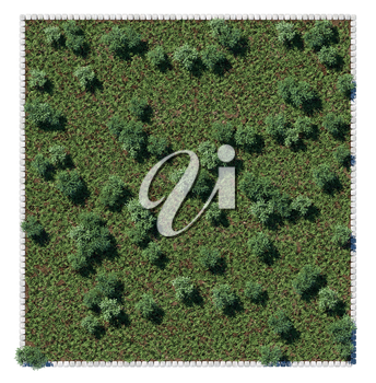 Park trees and glade view from above. Square composition isolated
