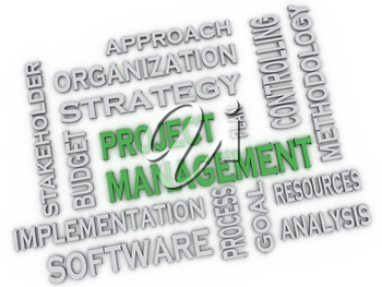 3d image project management issues concept word cloud background