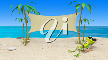 3D Illustration of a Frog in a Deckchair on the Beach and Cloth Background
