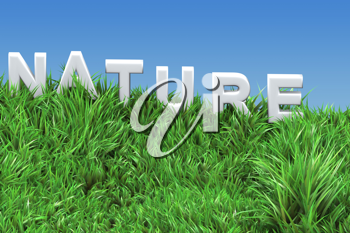 Royalty Free Clipart Image of a Nature