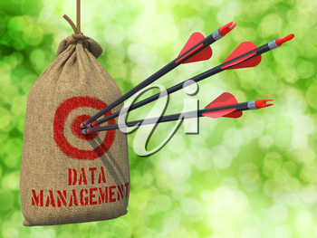 Data Management - Three Arrows Hit in Red Target on a Hanging Sack on Green Bokeh Background.