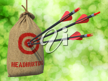 Headhunting - Three Arrows Hit in Red Target on a Hanging Sack on Natural Bokeh Background.