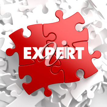 Expert on Red Puzzle on White Background.