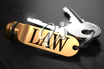 Law Concept. Keys with Golden Keyring on Black Wooden Table. Closeup View, Selective Focus, 3D Render. Toned Image.