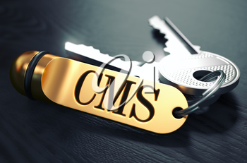 Keys and Golden Keyring with the Word CMS - Content Management System - over Black Wooden Table with Blur Effect. Toned Image.