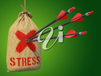 Stress - Three Arrows Hit in Red Target on a Hanging Sack on Green Background.