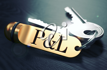 Profit and Loss - Bunch of Keys with Text on Golden Keychain. Black Wooden Background. Closeup View with Selective Focus. 3D Illustration. Toned Image.
