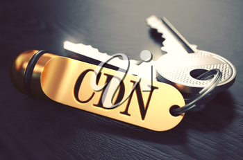 CDN - Content Delivery Networks - Bunch of Keys with Text on Golden Keychain. Black Wooden Background. Closeup View with Selective Focus. 3D Illustration. Toned Image.