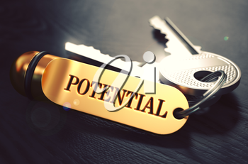 Potential - Bunch of Keys with Text on Golden Keychain. Black Wooden Background. Closeup View with Selective Focus. 3D Illustration. Toned Image.