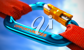 Red Ropes Connected by Blue Carabiner Hook with Text Opportunities. Selective Focus. 3d Render.