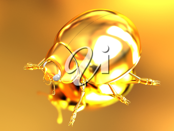 golden beetle on a gold background