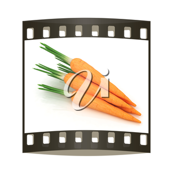 Heap of carrots on a white background. The film strip