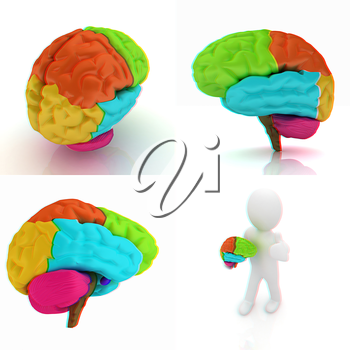 Colorfull human brain. 3D illustration. Anaglyph. View with red/cyan glasses to see in 3D.