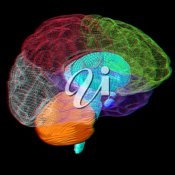 Creative concept of the human brain. 3D illustration. Anaglyph. View with red/cyan glasses to see in 3D.