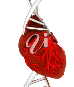 DNA and heart. 3d illustration