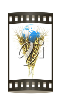 Golden metal ears of wheat and Earth. Symbol that depicts prosperity, wealth and abundance. 3d render. Film strip.