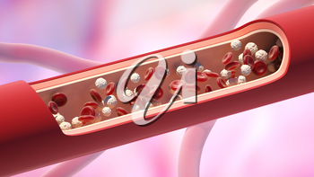 Red and white blood cells in the vein. Leukocyte high level. 3D illustration