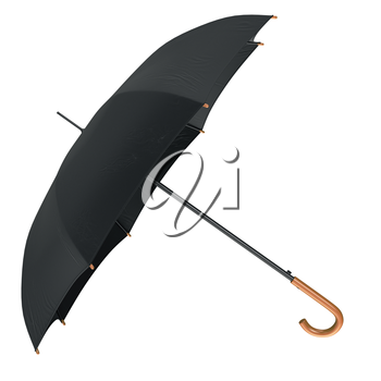 Classic rain umbrella open with wooden handle. 3D graphic